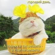 Юлия Михайлова on My World.