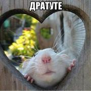 Татьяна Гавриленко on My World.