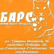 студенты родители! магазин в твери барс Москву приходит