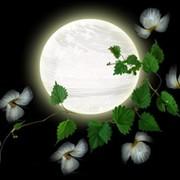 Mystere de la lune on My World.